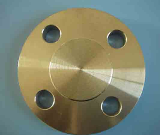 Beryllium Copper Alloy Blind Flanges